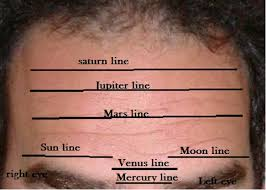 Image result for forehead lines reading