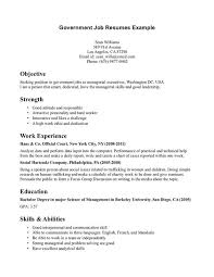 job resume examples job resume and government jobs on pinterest government job resumes sample examples resumes for jobs