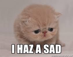 I haz a sad - Super Sad Cat | Meme Generator via Relatably.com