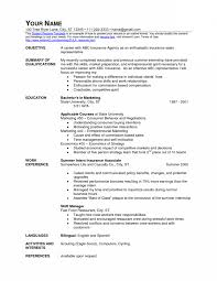 s associate cashier job description resume job description for s associate cashier job description resume job description for resume sample for retail cashier resume examples for cashier job resume example for