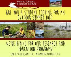 mersey tobeatic research institute mtri institut de recherche throughout the summer