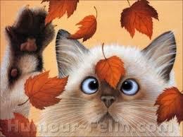 """Résultat de recherche d'images pour """"gif s les feuilles mortes d' automne"""""""