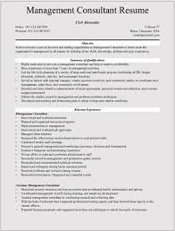 pre s software resume s and marketing resumes written by professionals smart career objective for s engineer