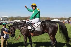 the hunt horse race is really just a drunken bro fest new york post modal trigger winner