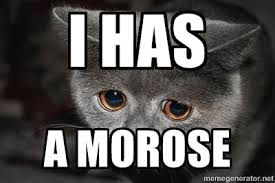 I has A morose - sad cat | Meme Generator via Relatably.com