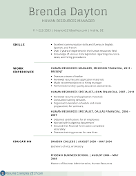 remarkable resume examples skills resume examples 2017 best resume examples skills