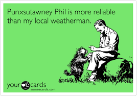 Image result for punxsutawney phil funny