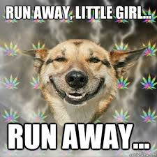 Run away, little girl... run away... - Stoner Dog - quickmeme via Relatably.com