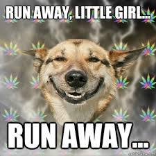 Run away, little girl... run away... - Stoner Dog - quickmeme via Relatably.com