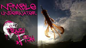 <b>Приманки</b> под водой. <b>Crazy Fish</b>. <b>Nimble</b>. Underwater. - YouTube