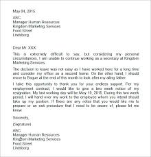 the warehouse   free business essay     can someone do my essay  the warehouse   free business essay