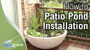 diy patio pond: how to create an easy container water feature with aquascapes patio pond