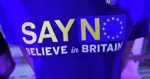 Image result for eu in out referendum