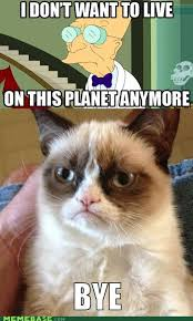 Memebase - grumpy cat - All Your Memes Are In Our Base - internet ... via Relatably.com