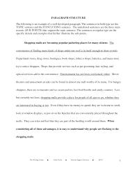 economics though the comprehensive essay format