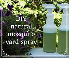 Comment faire du spray anti-moustique biologique fait maison | Dengarden