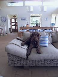 mondays pets on furniture desire to inspire desiretoinspirenet big dog furniture
