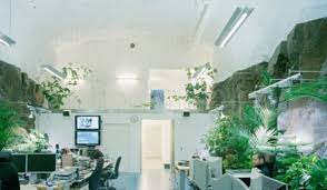 very awesome unique green office design ideas blend with the nature awesome unique green office design