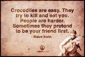 Steve Irwin | Quotes & Words | Pinterest