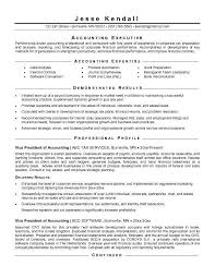 vice president free examples of accounting resumes