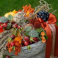 Výsledek obrázku pro podzimní plody