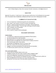 Examples Of A Resume Summary  resume examples example of resume