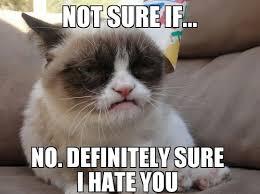grumpy cat meme via Relatably.com