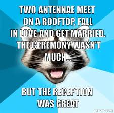 Lame Pun Coon Meme Generator - DIY LOL via Relatably.com