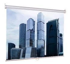 Купить <b>Экран LUMIEN Eco Picture</b> LEP-100105 в интернет ...
