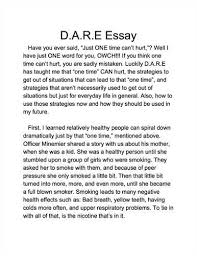 ideas about Essay Examples on Pinterest   How To Write Essay