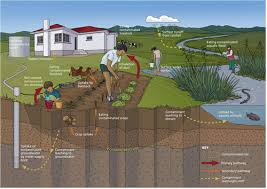 Image result for contaminated soil