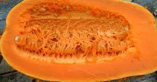 Как выбрать сорт и вырастить вкусные витаминные мускатные ...