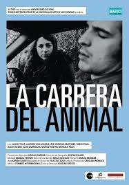 La carrera del animal
