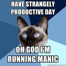 Have Strangely Productive Day Cat Meme - Cat Planet | Cat Planet via Relatably.com