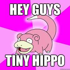 hey guys tiny hippo - Slow Poke - quickmeme via Relatably.com