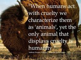 When humans act with cruelty we characterize them as `animal`,yet ...
