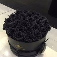 Alice Zabolotnaya want : букет из черных роз!