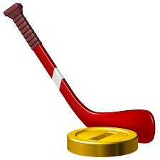 Image result for hockey