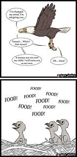 8 <b>New</b> 'Pixie And Brutus' Comics To Brighten Up Your Day   Cute ...