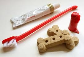 Πώς μπορείτε να φτιάξετε οδοντόπαστα για το σκύλο σας...