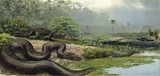 How Titanoboa, the 40-Foot-<b>Long</b> Snake, Was Found   Science ...