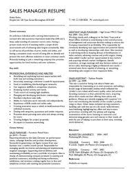 manager resume objective exles sales  seangarrette cosales manager resume objective sales manager resume objective free sample resumes   manager resume