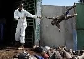Massaker in Burma Images?q=tbn:ANd9GcSCp_tzOfbmRZtUjs5xMufhg_pBwSf2S3r24vME8xLL8DdG_QFN
