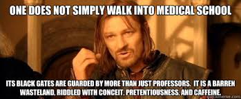 One does not simply walk into Medical School Its black gates are ... via Relatably.com