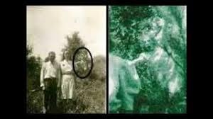 Resultado de imagem para IMAGENS DE VOCÊ TEM MEDO, TIMIDEZ, FOBIA OU COVARDIA ......
