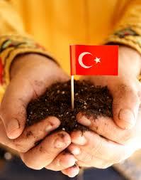 %name Yurt Sevgisi ve Ben Köyümü Özledim Şiiri