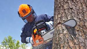 Image result for chain saw