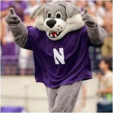 Image result for northwestern university mascot