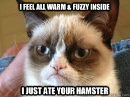 I feel all warm & Fuzzy inside I just ate your hamster - Tardar ... via Relatably.com