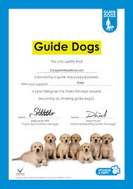compare holiday money sponsors guide dogs puppy eddie compare compare holiday money sponsors guide dogs puppy eddie eddie the puppy guide dogs sponsorship certificate